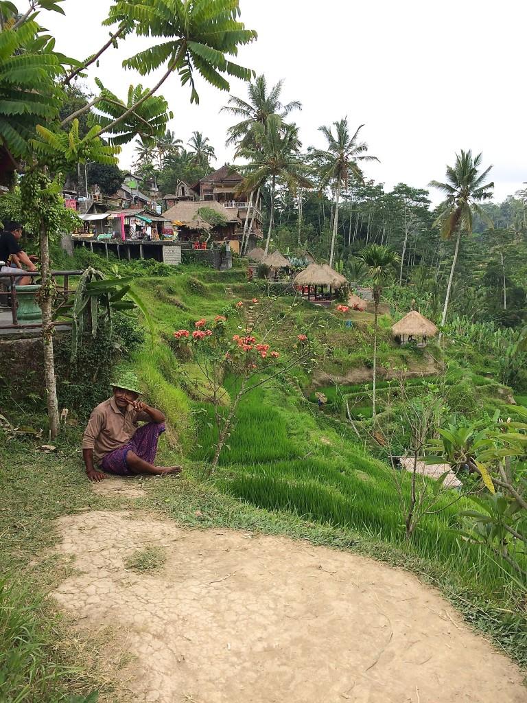 bali-tegalalang